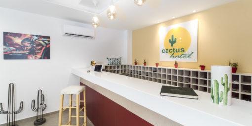 Cactus_H-30